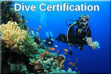 Scuba dive certification